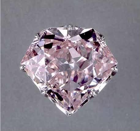 Hortensia Pink Diamond