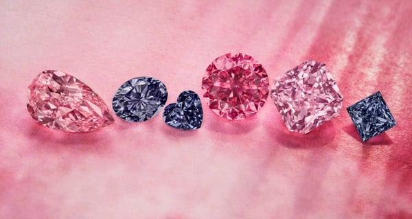 argyle tender hero diamonds
