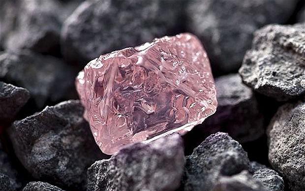 pink jubilee rough